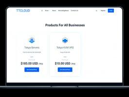 TTCLOUD – 圣何塞E5 带宽100M 163直连 月付59美元